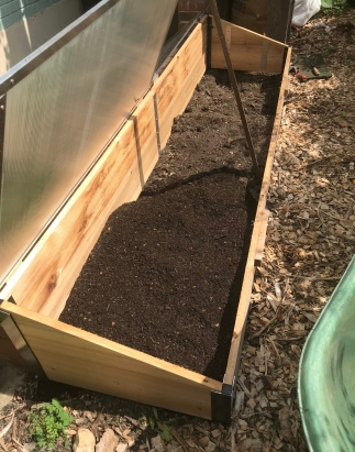 Harvesting compost from the girls!